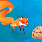 Cómo borrar cookies sueltas en firefox